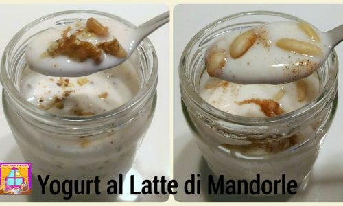 Yogurt di Mandorle con Yogurtiera